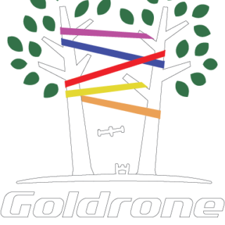 https://filenvol.com/wp-content/uploads/2018/12/logo_goldrone_valid4_COLOR_White-320x320.png